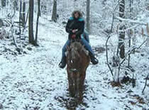 single rider on a winter trail
